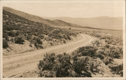 Dirt Road through dessert and mountains Postcard