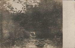 Small river falls in the woods Postcard