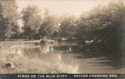 Scene on the Blue River Postcard