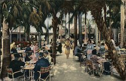 Palm Garden Restaurant Postcard