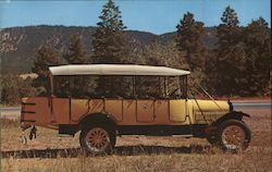 1925 White Yellowstone Park Bus Postcard