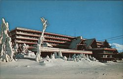 Snow Lake Lodge Postcard