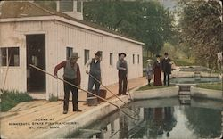 Scene at Minnesota State Fish Hatcheries Postcard