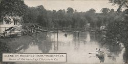 Scene in Hershey Park - Home of the Hershey Chocolate Company Postcard