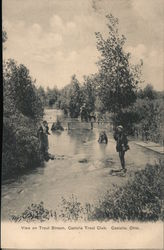 View on Trout Stream, Castalia Trout Club Postcard