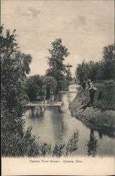 Castalia Trout Stream Postcard