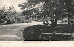 Beadsley Park Postcard