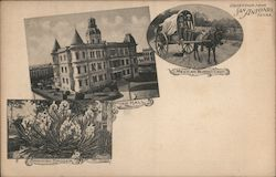 San Antonio City Hall, Mexican Burro Cart, Spanish Dagger Postcard