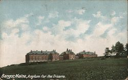 Asylum for the Insane Postcard