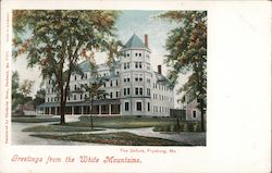 Greetings from the White Mountains - The Oxford Postcard