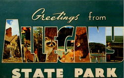 Greetings From Allegany State Park Postcard