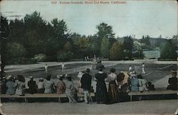 Tennis Grounds, Hotel Del Monte Postcard