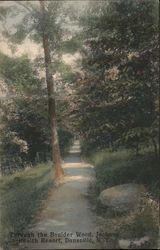 Through the Boulder Wood, Jackson Health Resort Postcard