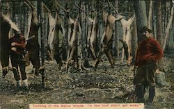 "Hunting in the Maine Woods ""A few that didn't get away"" Postcard"