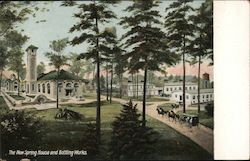 The New Spring House and Bottling Works Postcard