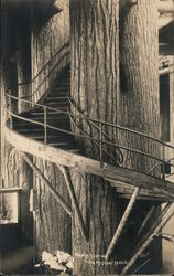 Winding Staircase in State Museum Postcard