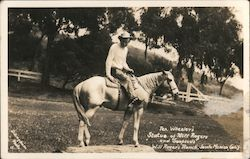 Tex Wheeler's statue of Will Rogers and Soapsuds at Will Roger's ranch Postcard