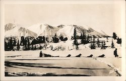 Winter & Pond 380 Breaking Trail in Alaska Dog Sled Pulling People through the Snow, Mountains, and Trees Postcard