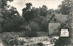 Dr Higley's Home on the Range, Pleasant Township Postcard