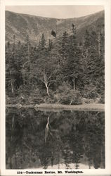 Tuckerman Ravine-Mount Washington Postcard
