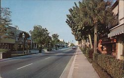 ML-76 Exclusive shopping area, Las Olas Boulevard Postcard