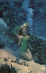Weeki Wachee Mermaid Postcard