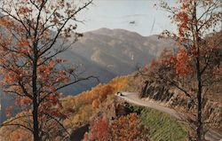 Newfound Gap Highway, Smoky Mountains - Kline Cadillac, Pennzoil Postcard
