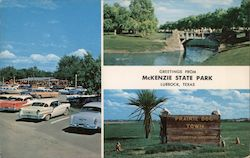 Greetings from McKenzie State Park Postcard