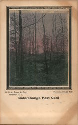 Color Change Post Card - Look at this card sideways Postcard