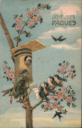 Birds in a Tree and a Bird House Postcard