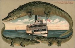 "Alligator Border S543 Steamer ""Fred'k de Barg"" on St. John's River Postcard"