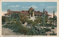 Main Building of the University of Arizona Postcard