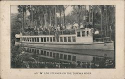"An ""N"" Line Steamer on the Tomoka River Postcard"