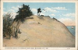 A Sheridan Beach Picturesque Sand Dune Postcard