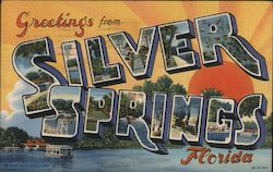 Greetings from Silver Springs Florida Postcard