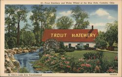 The Trout Hatchery and Water Wheel at the Blue Hole Postcard