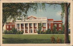 Gymnasium, University of Alabama Postcard