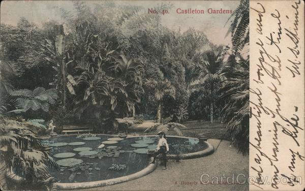 Castleton Gardens Jamaica