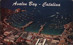 Avalon - Catalina Island Postcard