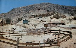 Calico Ghost Town, Corral & Pack Burros Postcard