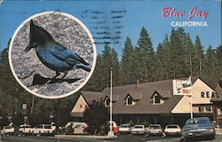 Blue Jay, California