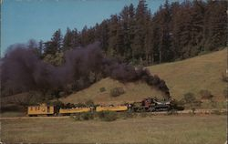 Roaring Camp Postcard