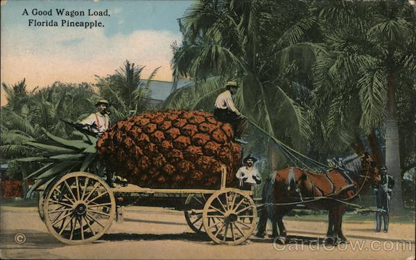 A Good Wagon Load, Florida Pineapple Exaggeration
