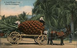 A Good Wagon Load, Florida Pineapple Postcard