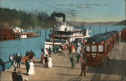 "Steamer ""Idaho"" at the Electric Dock Postcard"