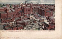 Principal Buildings of the Anheuser-Busch Brewing Plant