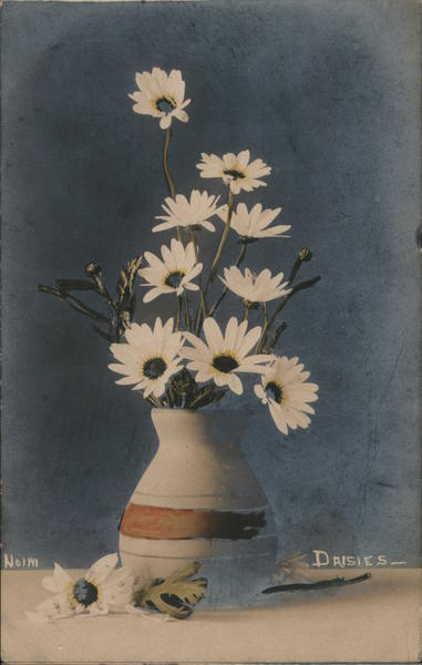 Daisies. Hand Colored Photo Flowers
