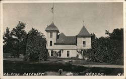 U.S. Fish Hatchery Postcard