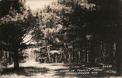 Scene in Tourist Park Postcard