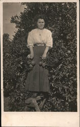 A woman standing in front of fruit trees while holding fruit. Postcard